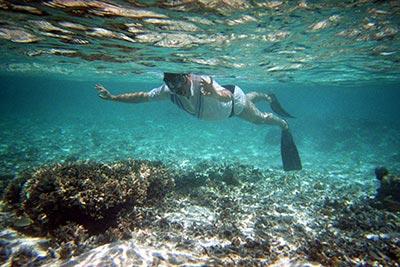 Specialist Maldive SORIN