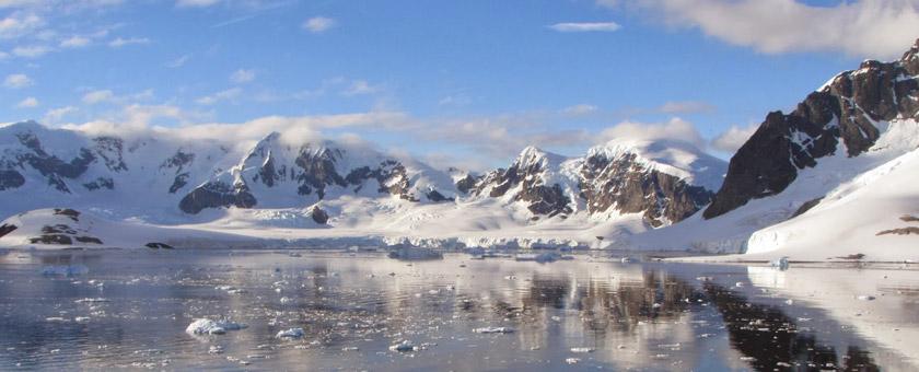 Atractii Insula Cuverville Antarctica - vezi vacantele