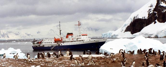 Croaziera Classic Antarctica