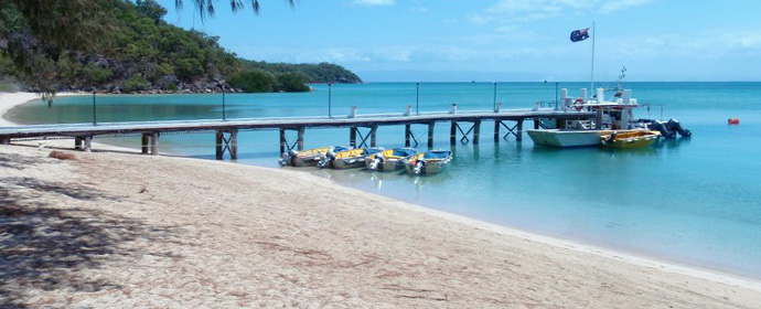 Atractii Orpheus Island Australia - vezi vacantele