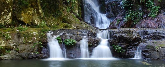 Parcul National Lamington