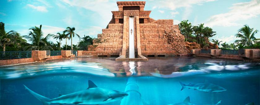 Discover Bahamas