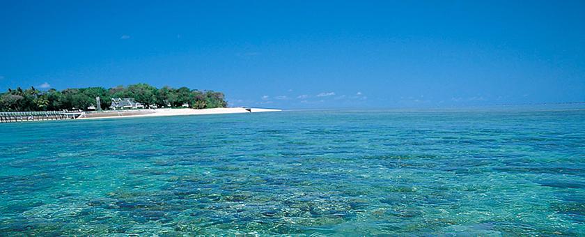Atractii Andros Barrier Reef Bahamas - vezi vacantele