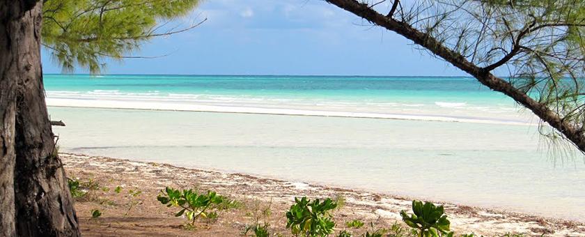 Atractii Parcul National Lucayan Bahamas - vezi vacantele