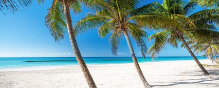 Sejur plaja Barbados - ianuarie 2021