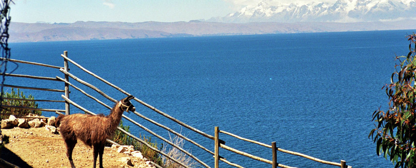 Atractii Isla del Sol Bolivia - vezi vacantele