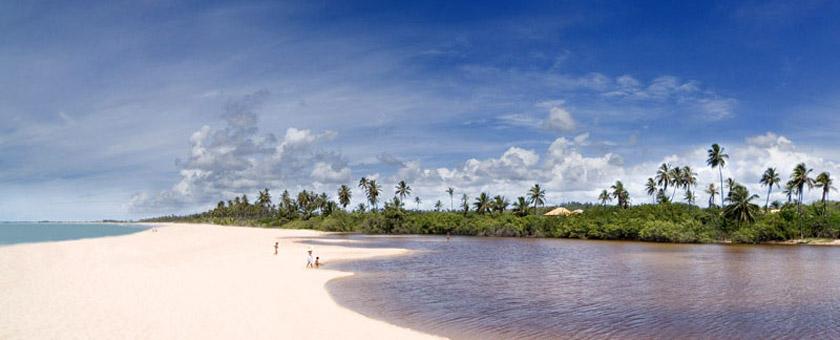 Atractii Praia do Forte Brazilia - vezi vacantele