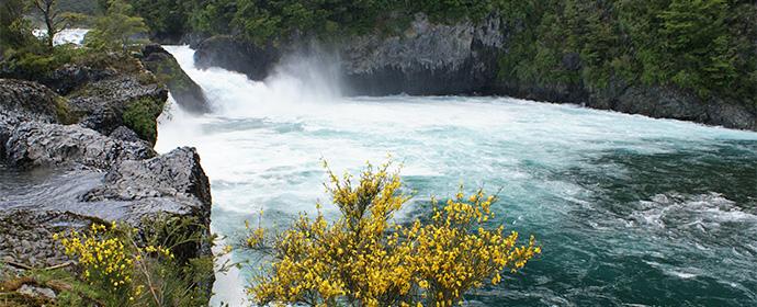 Atractii Parcul Vicente Perez Rosales Chile & Insula Pastelui - vezi vacantele