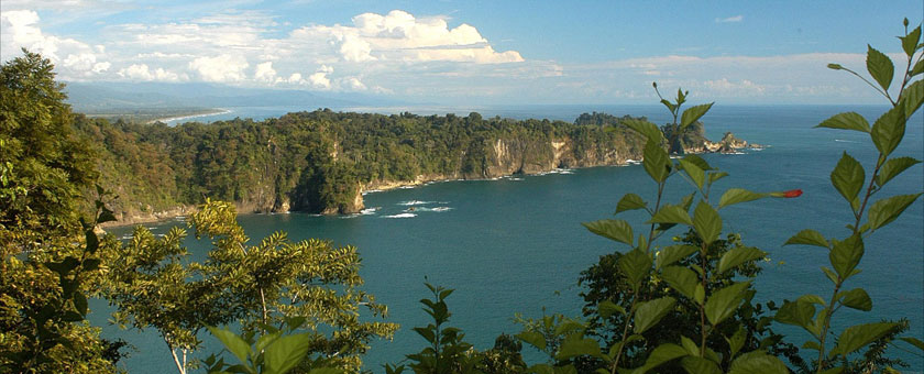 Atractii Parcul National Carara Costa Rica - vezi vacantele