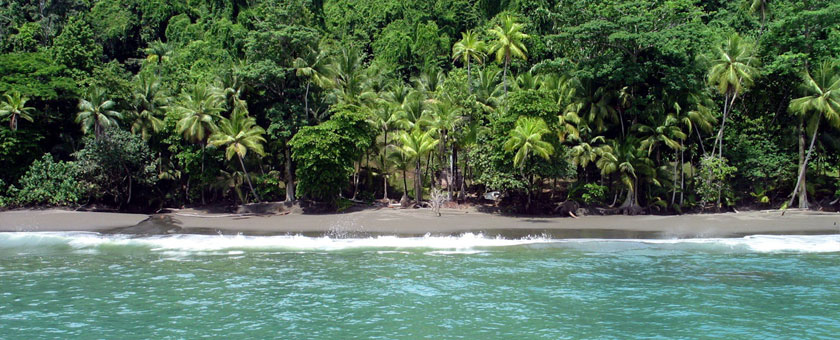 Atractii Peninsula Osa Costa Rica - vezi vacantele
