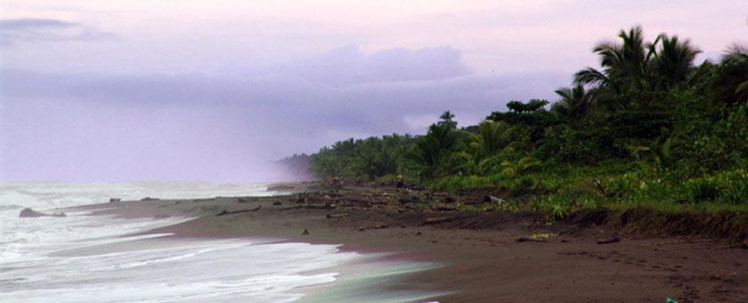 Atractii Tortuguero Costa Rica - vezi vacantele