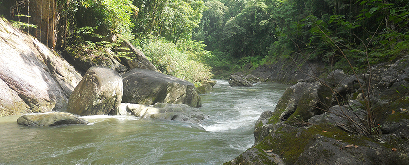 Atractii Rezervatia Biosferei Rio Platano Honduras - vezi vacantele