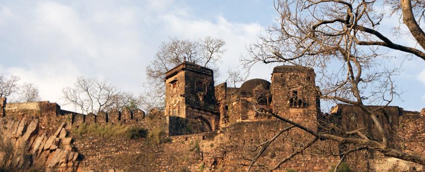 Atractii Ranthambhore India - vezi vacantele