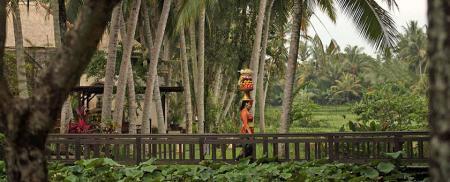 Revelion 2021 - Sejur Ubud & plaja Bali Sud