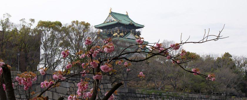 Atractii Castelul Osaka Japonia - vezi vacantele