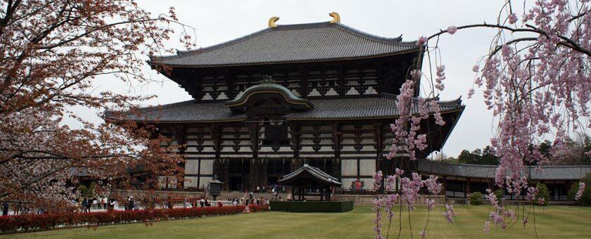 Atractii Nara Japonia - vezi vacantele