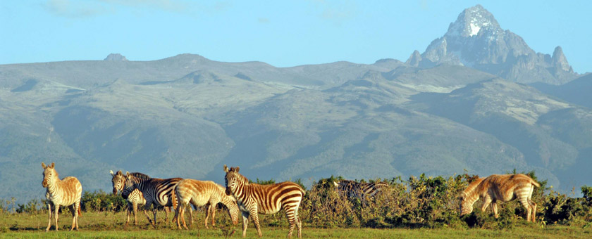Atractii Muntele Kenya Kenya - vezi vacantele