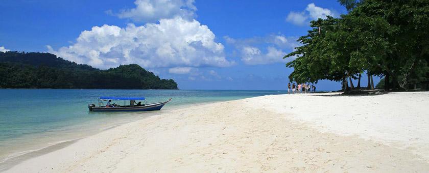 Atractii Insula Selingan Malaezia - vezi vacantele