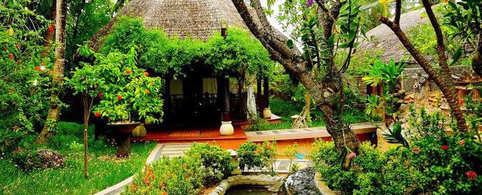 Maldive in Style