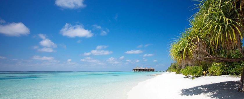 Maldive Touch - Low Season - cu Qatar Airways