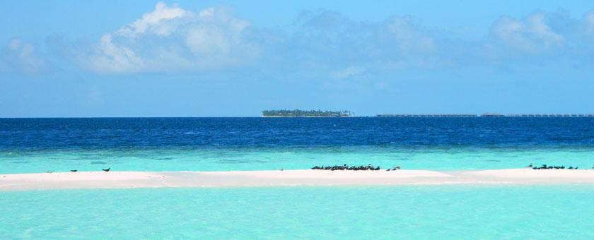Croaziera Maldive, Sri Lanka & India, 16 zile - martie 2019