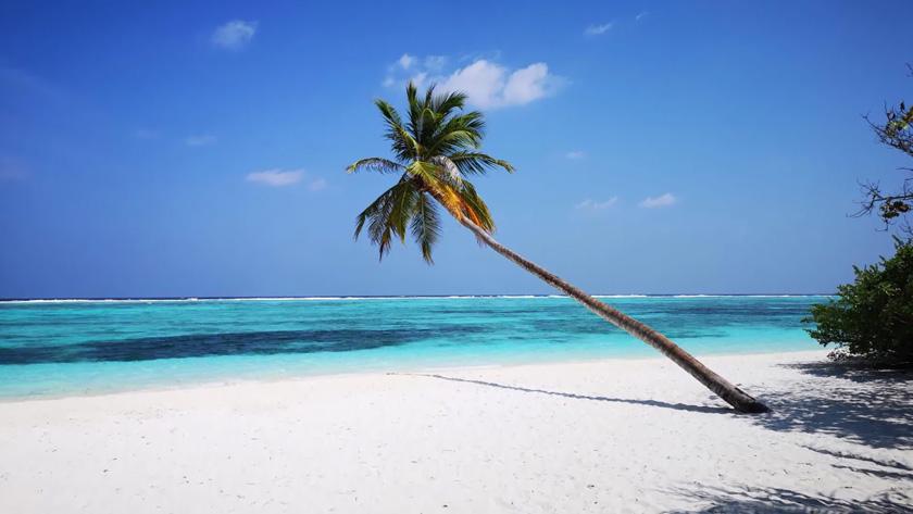 Sejur plaja Embudu Village Resort 3*, 12 zile