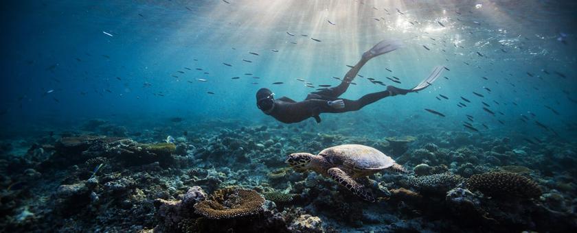 Sejur plaja Maldive, 8 zile - august 2020