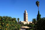 Maroc in Style