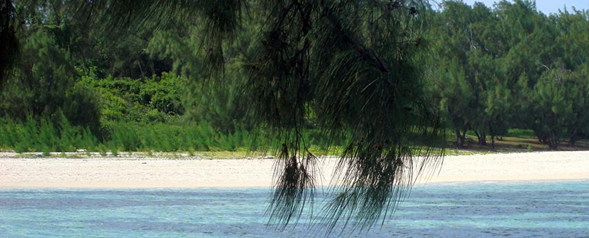 Atractii Ile aux Cerfs Mauritius - vezi vacantele