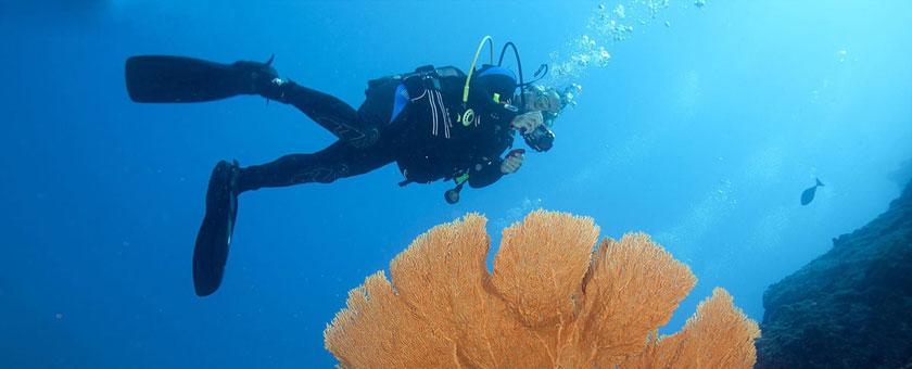 Discover Madagascar & Mauritius 15 zile - septembrie 2017