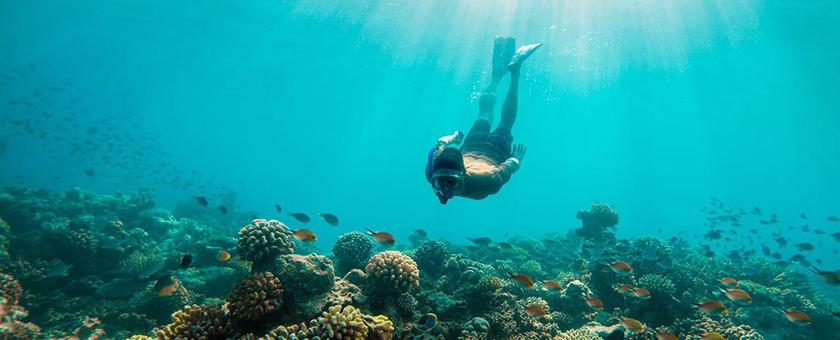 Sejur plaja Mauritius, 12 zile - 27 ianuarie 2021