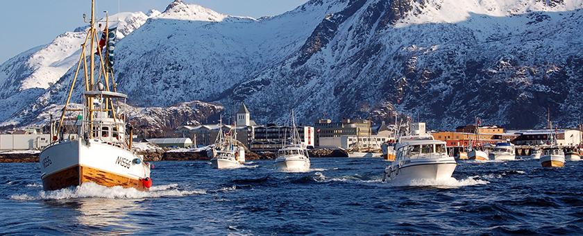 Atractii Insula Lofoten Norvegia - vezi vacantele
