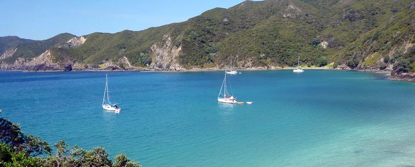 Atractii Golful Insulelor Noua Zeelanda - vezi vacantele