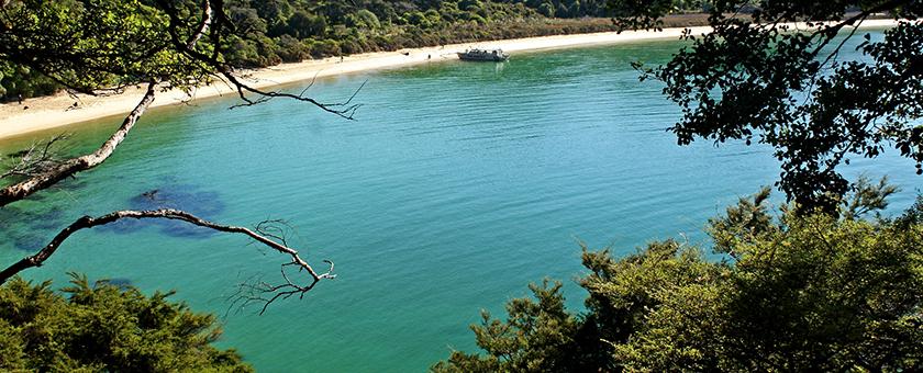 Atractii Parcul Abel Tasman Noua Zeelanda - vezi vacantele