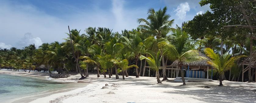 Paste - Sejur plaja Punta Cana, Republica Dominicana, 11 zile