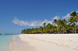 Sejur plaja Punta Cana, Republica Dominicana, 10 zile - iunie 2015 Caraibe Oferte Caraibe - Eturia Agentie de turism - Agentia de Turism Eturia