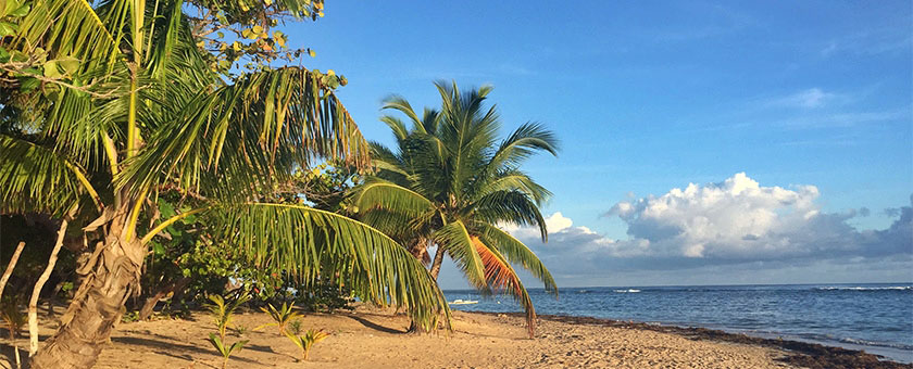 Sejur plaja Punta Cana Republica Dominicana, 10 zile - 8 nopti