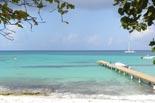 Sejur Republica Dominicana: plaja La Romana & Punta Cana, 12 zile Caraibe Oferte Caraibe - Agentia de Turism Eturia