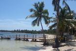 Sejur plaja Punta Cana, Republica Dominicana, 13 zile - ianuarie 2016 Caraibe Oferte Caraibe - Eturia Agentie de turism - Agentia de Turism Eturia