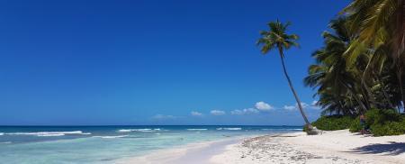 Sejur plaja Punta Cana, 11 zile - 04 ianuarie 2021