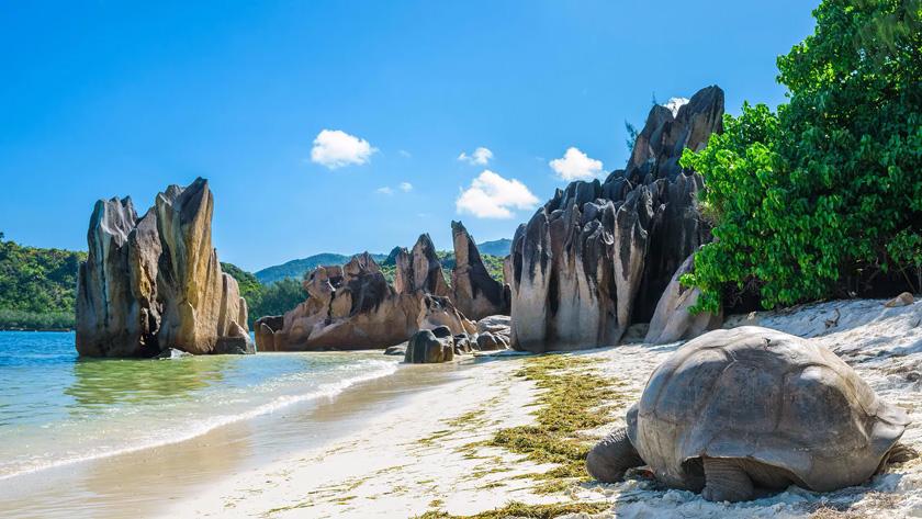 Sejur plaja Mahe, Seychelles, 10 zile - septembrie 2021