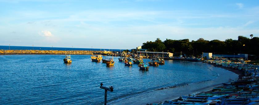 Atractii Kataragama Sri Lanka - vezi vacantele