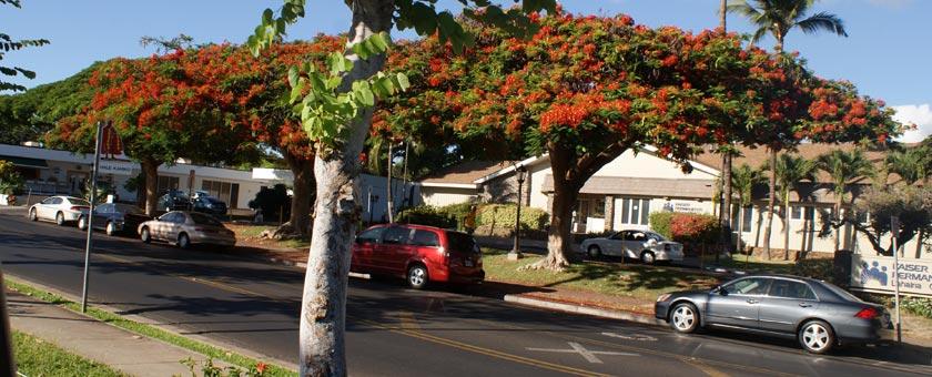 Atractii Maui Statele Unite ale Americii - vezi vacantele