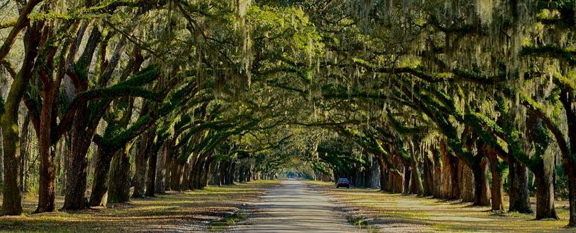 Atractii Savannah Statele Unite ale Americii - vezi vacantele