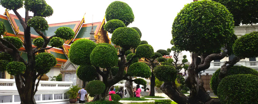 Palatul Regal Bangkok, Thailanda Poza realizata de Cristina Gradinariu, noiembrie 2015