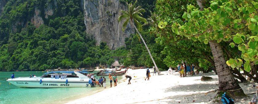 Phi Phi Thailanda