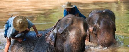Adventure Thailanda