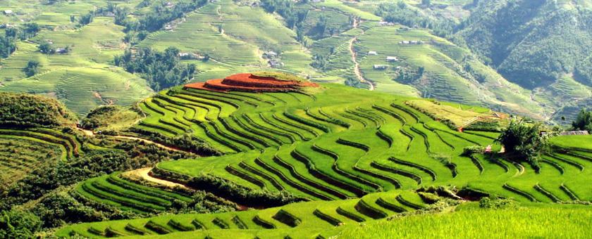 Lao Cai Vietnam