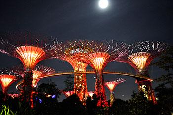 Impresii Circuit Singapore & Krabi - august 2014