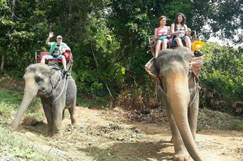 Impresii Phuket - februarie 2016
